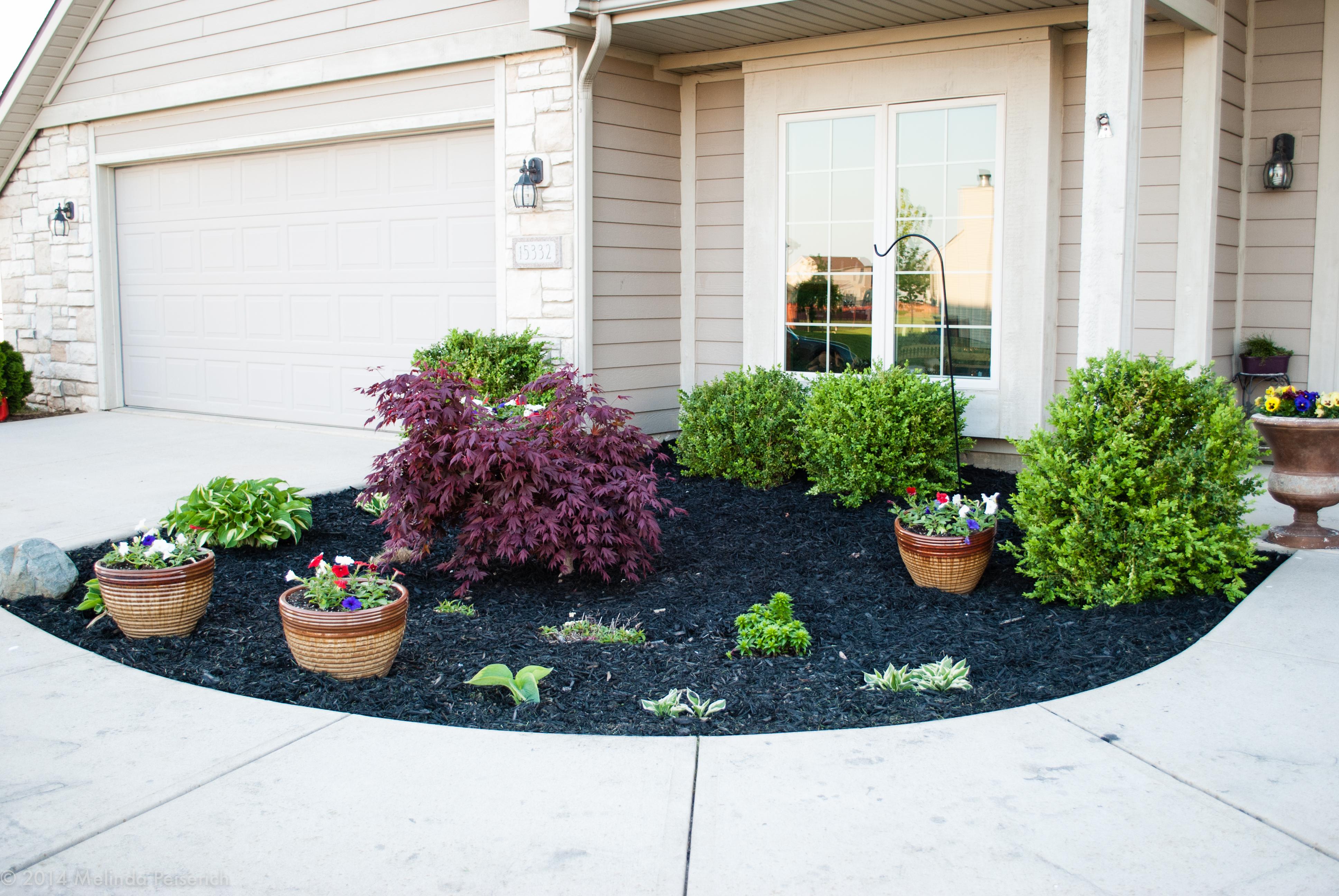 Spring flowers doodlebug blogs for Best plants for front flower bed